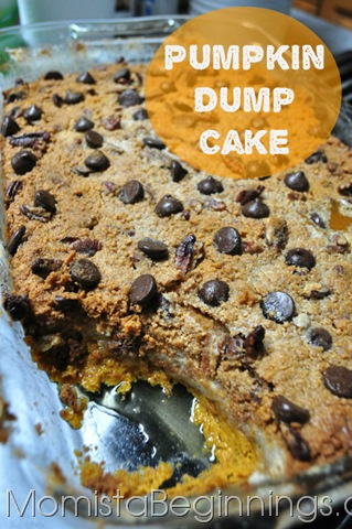 Pumpkin Dump Cake {Recipe}