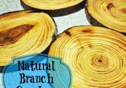 Etsy Store Update: Branch Coasters
